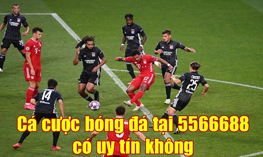 Cá cược bóng đá tại 5566688 có uy tín không
