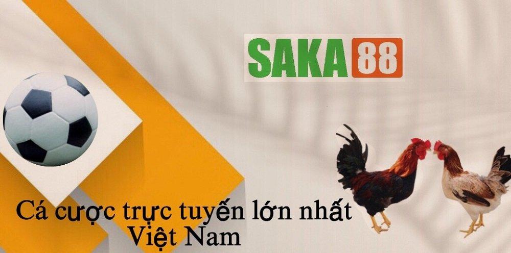 Giới thiệu hệ thống SAKA88